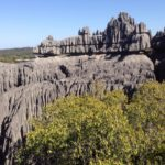 The spectacular mineral forest of Tsingy de Bemarahastands on the western coast of Madagascar. The whole protected area, designated a World Heritage Site by the UNESCO in 1990, comprises a surface of 1.575 km². The reserve's canyons, gorges, undisturbed forests, lakes and mangrove swamps display an amazing richness of fauna and flora which have not been completely recorded. The rate of endemism is about 85%, and 47% are even local endemic!